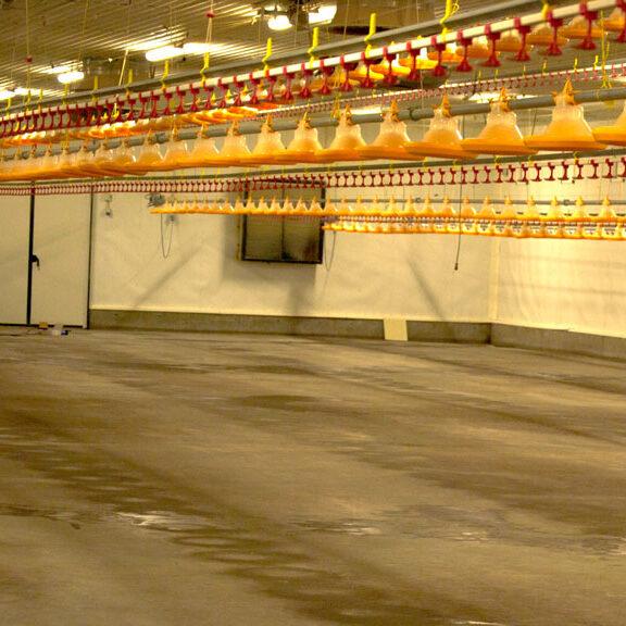 komsol-landwirtschaft-betonboden-stallung-stall-schutz-versiegeln-reiniger