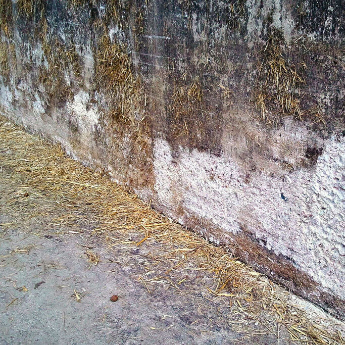 komsol landwirtschaft betonboden stallung stall schutz versiegeln reinigen Gülle Hühnerstall Salze
