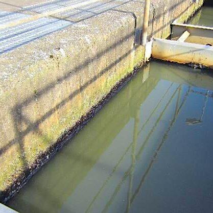 komsol Innerseal Klaeranlagen Trinkwasser Becken Sanierung Versiegelung Reparatur Reinigung Klaerbecken