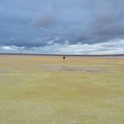 kosmol innerseal Wasser auffangbecken erdbeben landwirtschaft bassin