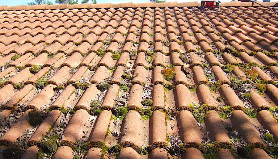 komsol innerseal topseal Dach Ziegel Haus schutz versiegeln vorher nachher Moos