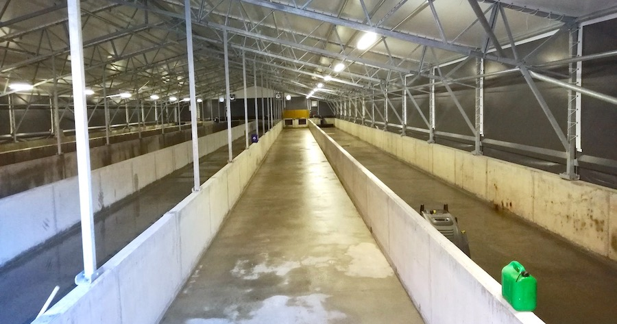 komsol innerseal versiegelung Meerwasser Fischfarm Becken Fishfarm Heilbutt